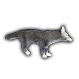 CP kleiner Wolf